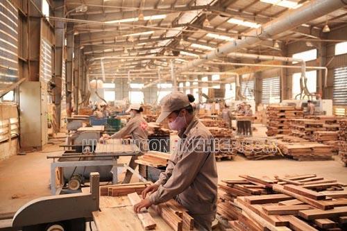 Nên sử dụng máy hút bụi xưởng gỗ loại nào?