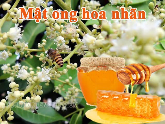 Mật ong hoa nhãn có những công dụng gì đối với chúng ta?