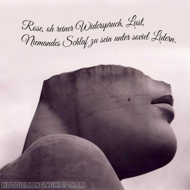 câu thơ được Rainer Maria Rilke tự chọn để khắc trên bia mộ