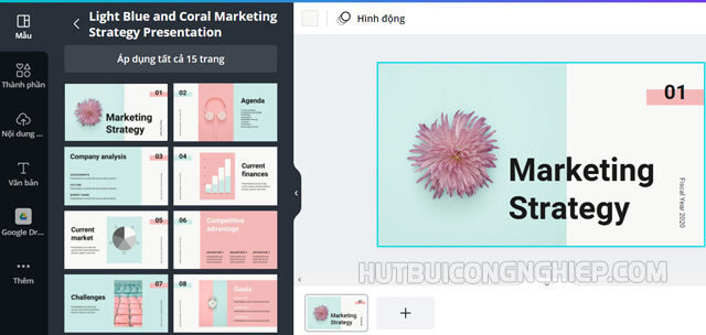 Mẫu powerpoint Light Blue and coral