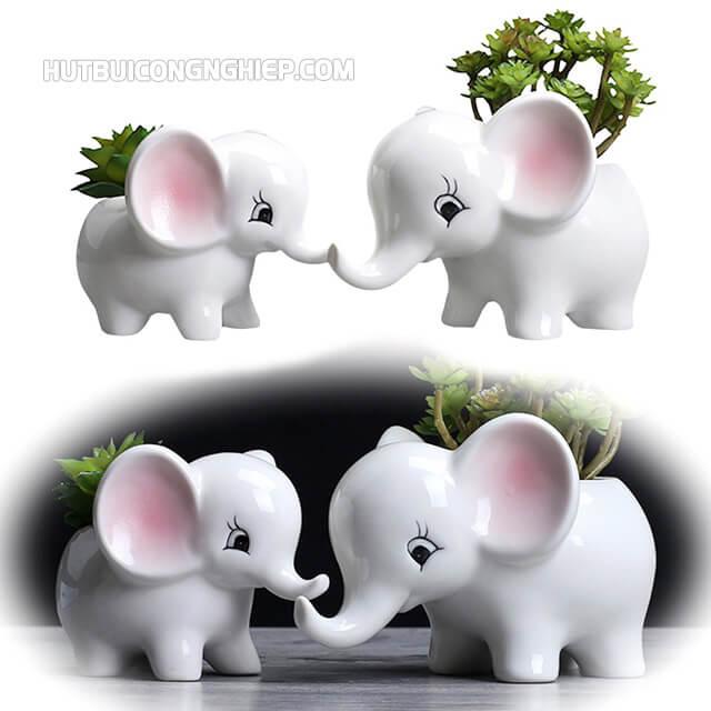Những chú voi được cho là mang lại nhiều may mắn khi đi thi
